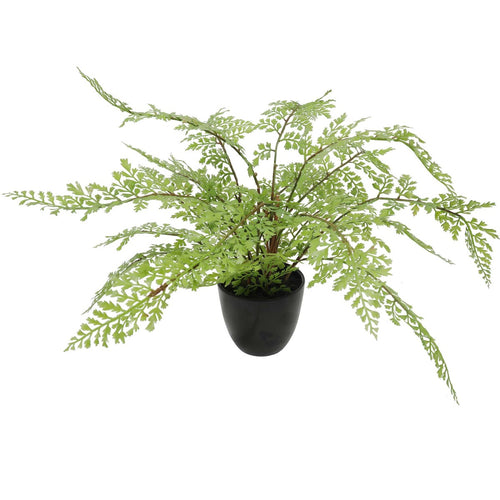 Faux Small Potted Fern 35cm