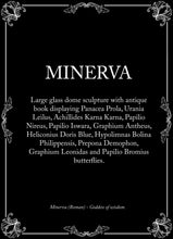 Load image into Gallery viewer, Minerva