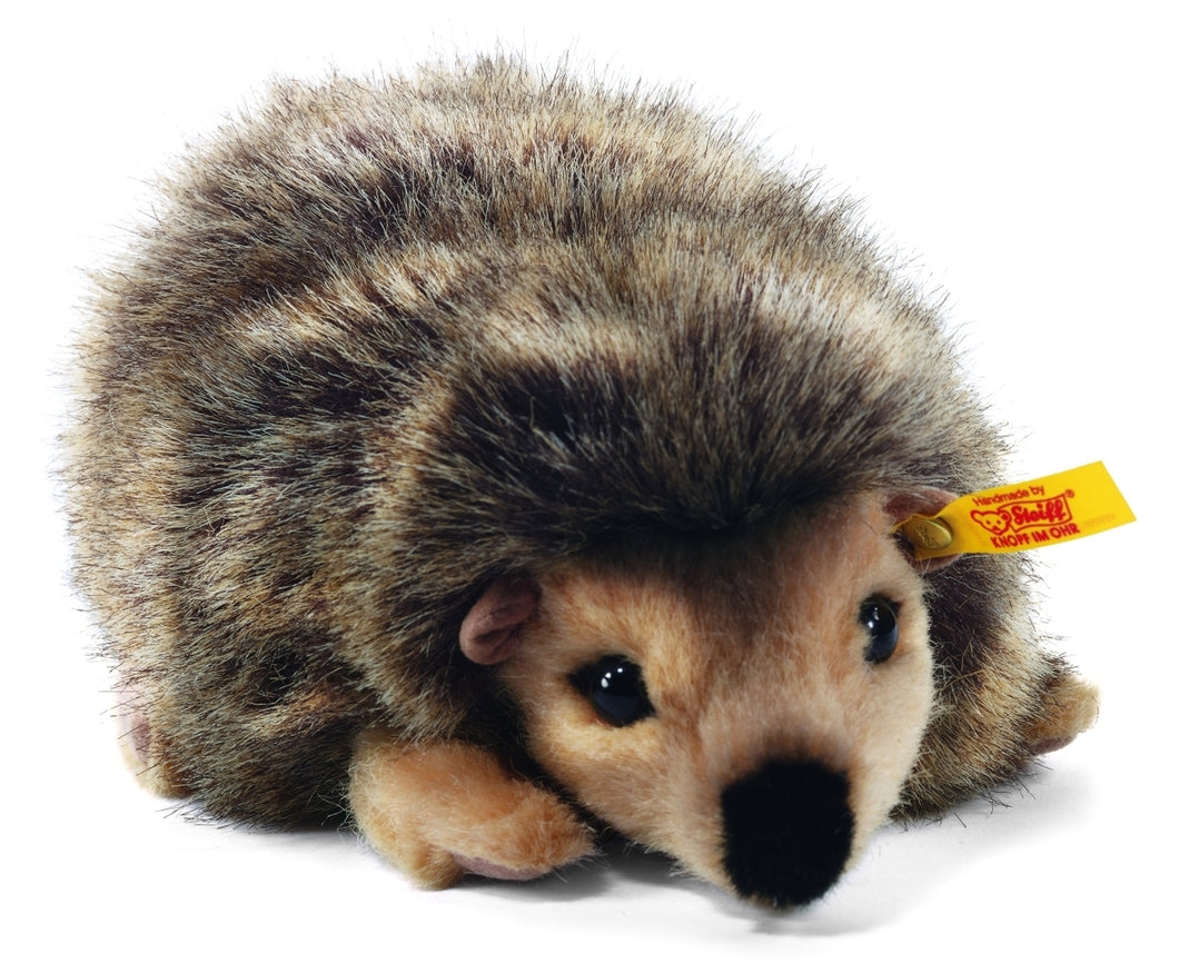 Joggi Hedgehog