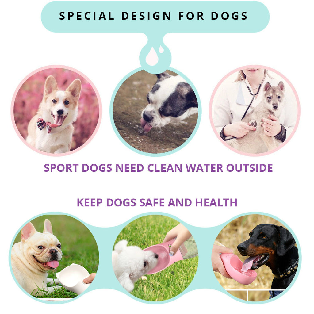 Dogs Water Bottle Features