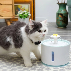Pet Drinking Fountain