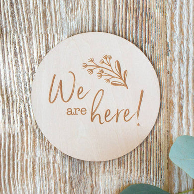 We are Here Milestone Disc
