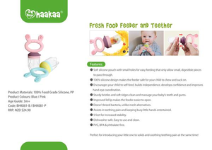 Haakaa Slate Grey Fresh Food Teether Feeder
