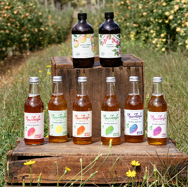 Sparkling Juices & Vinegar Mixed Carton