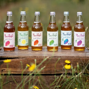 Mixed Sparkling Juices - 12 x 330ml