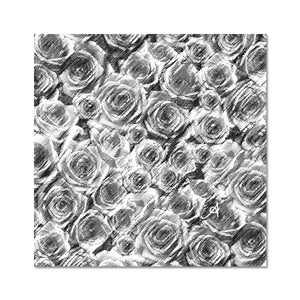 "Photo Prints 10""x10"" Textured Roses Monochrome Amanya Design C-Type Print Prodigi"