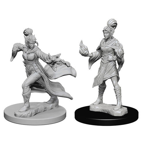 Pathfinder Deep Cuts Unpainted Miniatures Elf Female Sorcerer