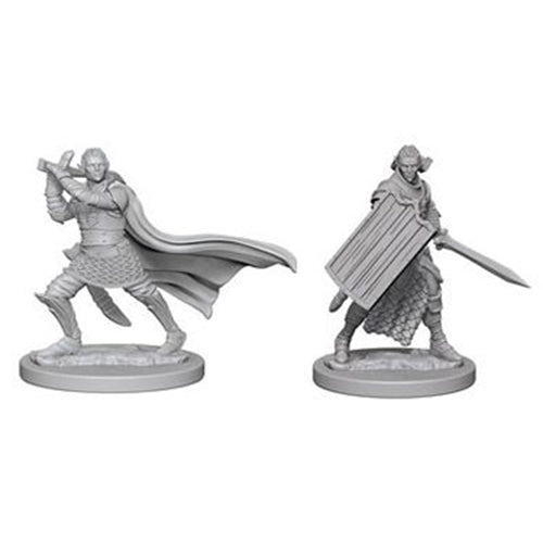 Pathfinder Deep Cuts Unpainted Miniatures Elf Male Paladin
