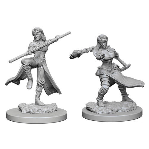 D&D Nolzurs Marvelous Unpainted Minis Human Female Monk