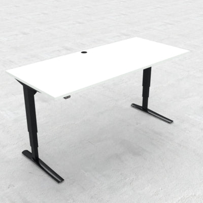 Straight Sit Stand mechanism