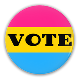 VOTE - Pansexual | Pin-Back Buttons - Ninja Ferret