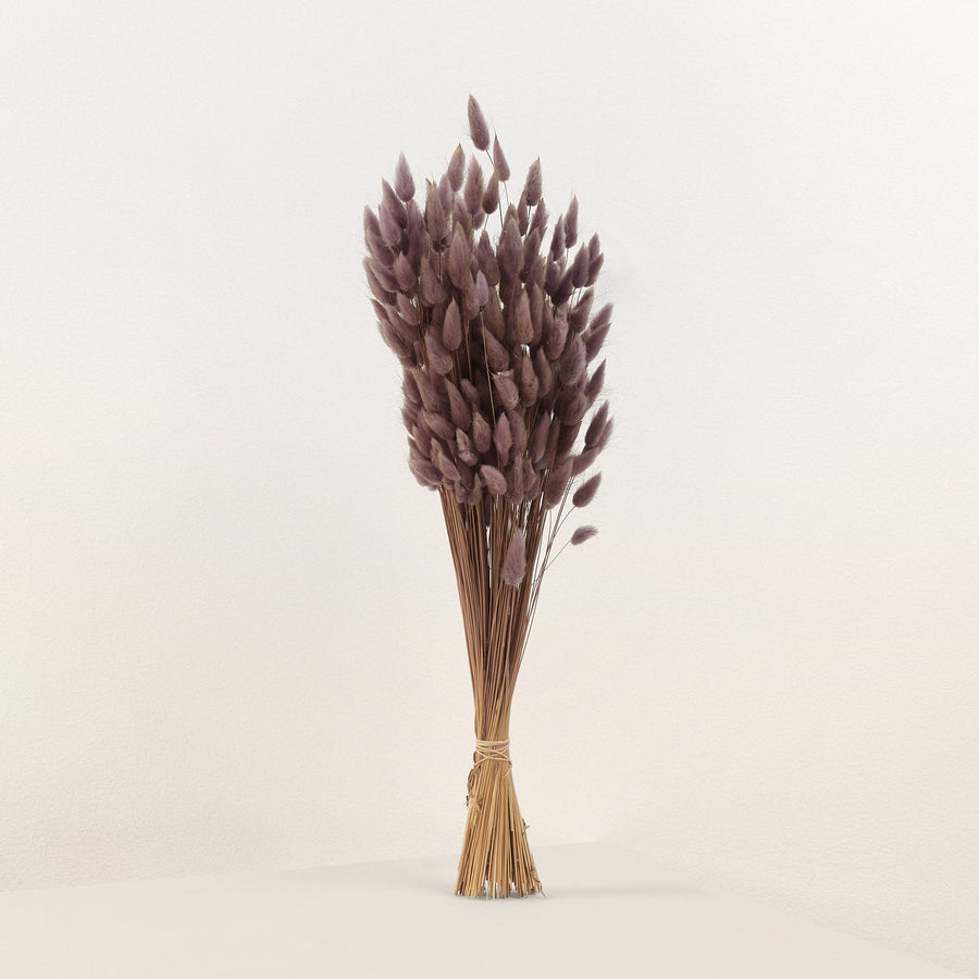 Purple  Dried Bunny Tails
