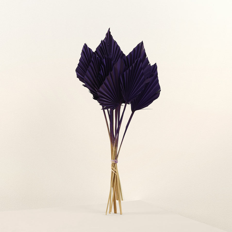 purple dried palm spears