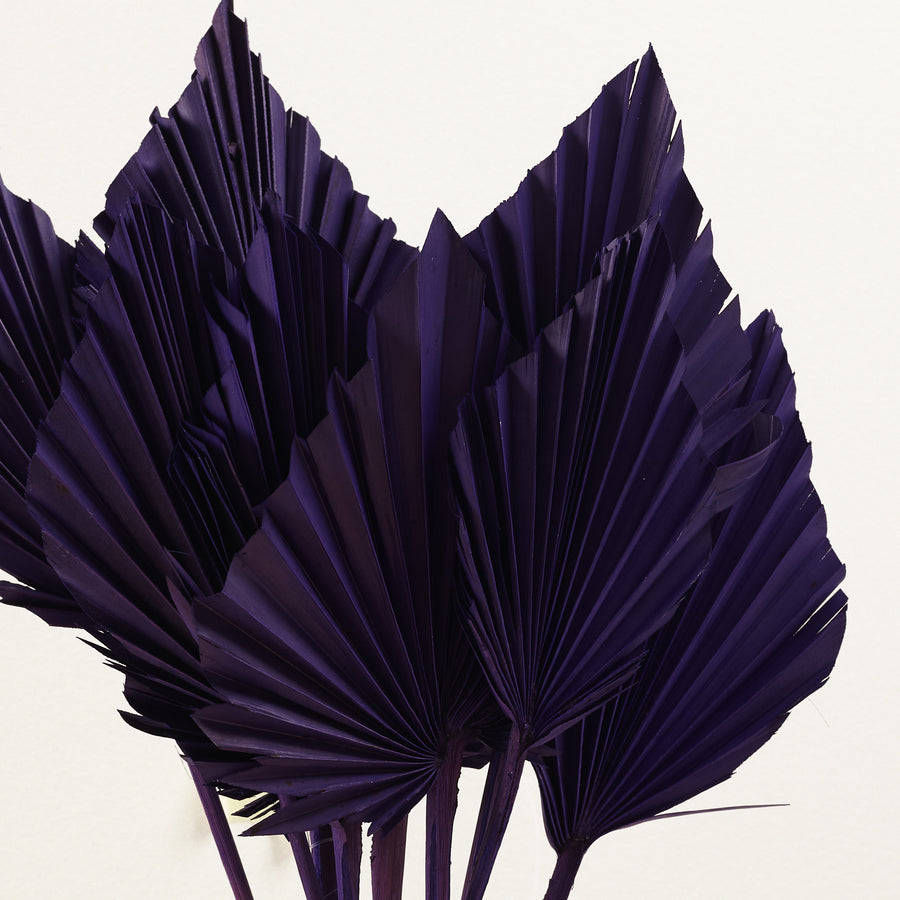 Purple Palm Spears