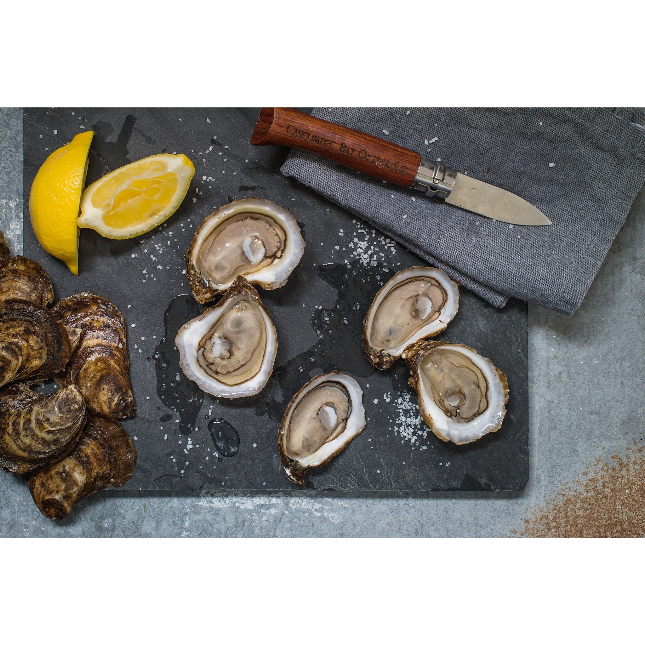 Foxley river Oysters