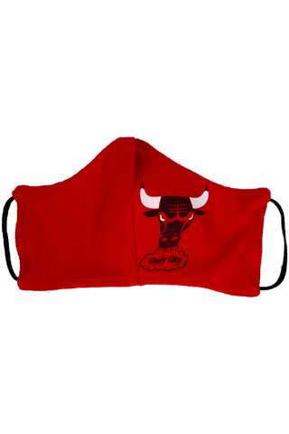 Reworked Vintage Chicago Bulls Windy City Face Mask