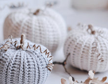 Load image into Gallery viewer, Crochet Pattern for Three Rustic Pumpkins - Firefly Crochet