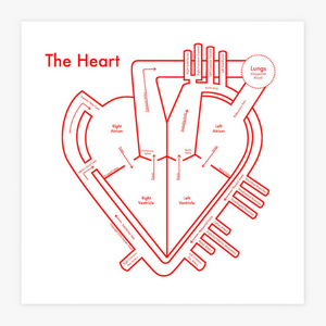 The Heart Letterpress Print