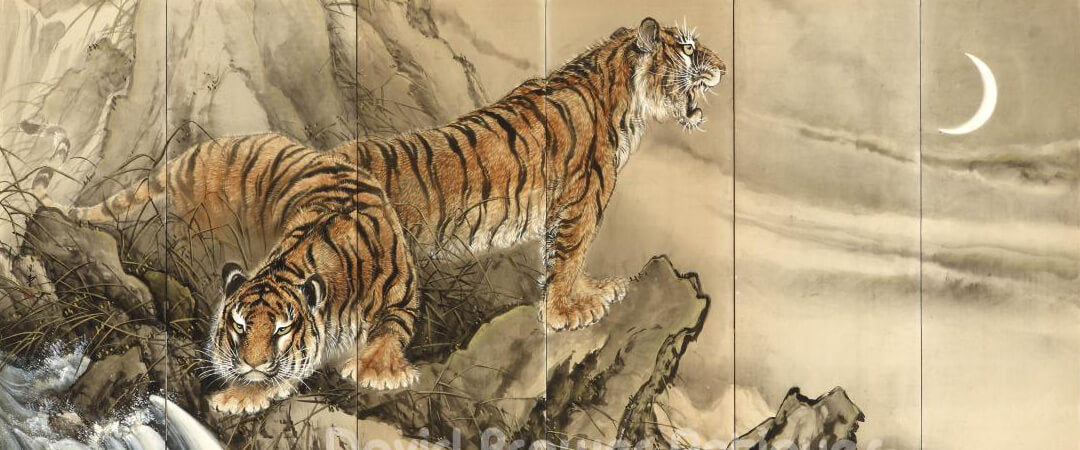 Japanese Tiger Conclusion
