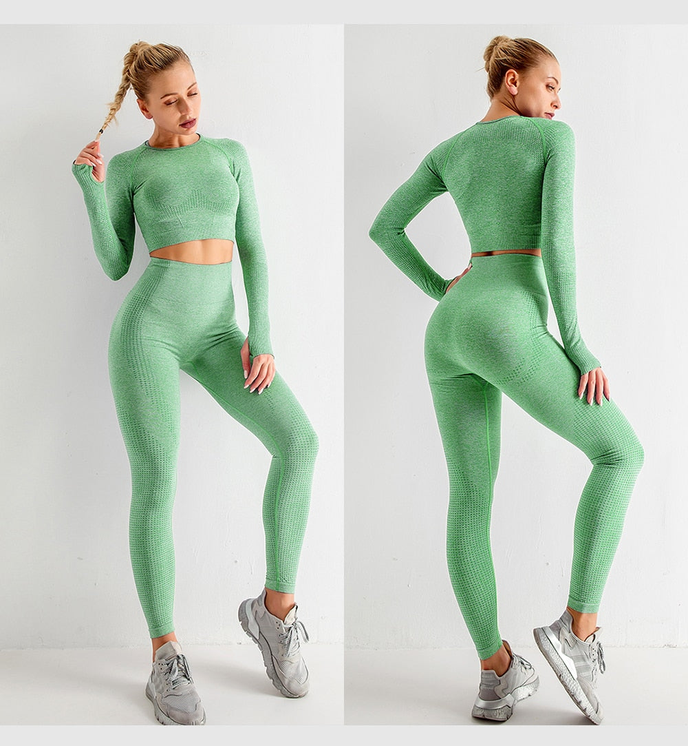 Fitlypht® Color Collection Shaping Leggings