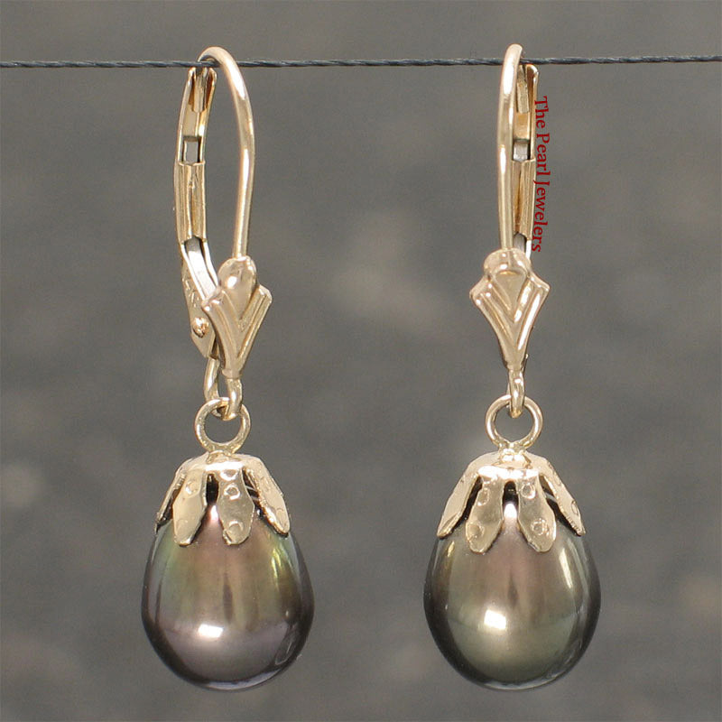 14k Yellow Solid Gold Lever Back & Cup Black Cultured Pearl Dangle Earrings