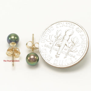 14k Yellow Gold AAA 4.5-5mm High Luster Black Cultured Pearl Stud Earrings