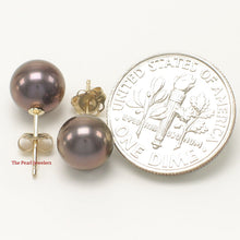 Load image into Gallery viewer, 14k Yellow Gold AAA 7.5-8mm High Luster Eggplant Cultured Pearl Stud Earrings