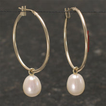 Load image into Gallery viewer, 14k Yellow Gold 25 X1.25mm Hoop; AAA F/W White Cultured Pearl Dangle Earrings