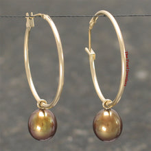 Load image into Gallery viewer, 14k Yellow Gold 25 X1.25mm Hoop; AAA 7-8mm Chocolate Cultured Pearl Earrings