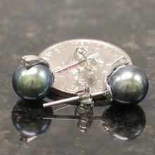 Load image into Gallery viewer, 14k-White-Gold-Diamond-Black-Cultured-Pearl-Stud-Earrings