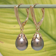 Load image into Gallery viewer, 14k-Yellow-Gold-Euro-Back-Shield-Cup-Black-Pearl-Dangle-Earrings
