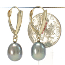 Load image into Gallery viewer, 14k-Yellow-Gold-Euro-Back-Shield-Blue-Pearl-Dangle-Earrings