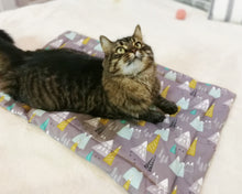 Load image into Gallery viewer, Pet Bed - Meowtains Print