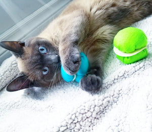 Cat Toy - Macaroon - Catnip and Bell inside