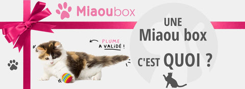 La box pour chat miaoubox