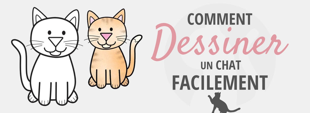 Comment Dessiner un Chat Facilement ?