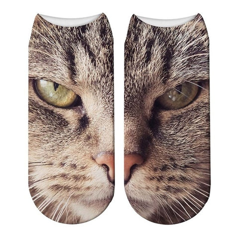 chaussette chat tigre