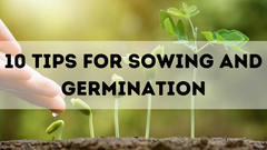 10 TIPS FOR SOWING AND GERMINATION