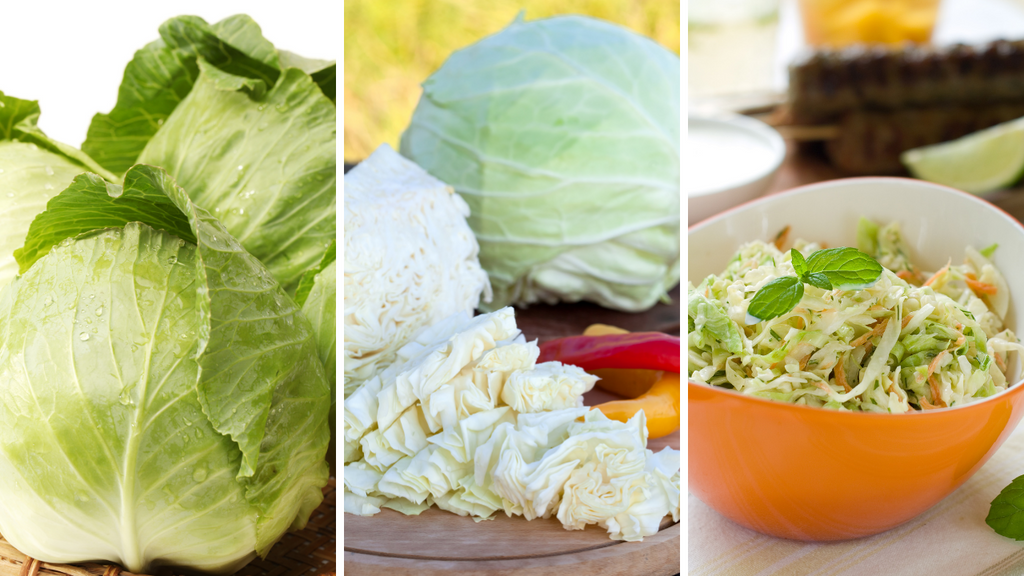 Best Ways to Use Your Fresh Cabbage