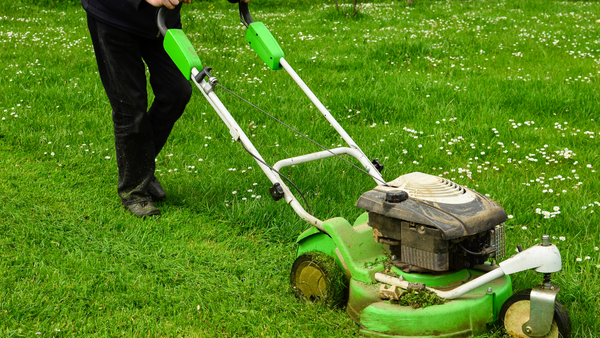 Give the Lawn a Refresh