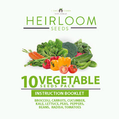 10 Vegetables Grow Guide