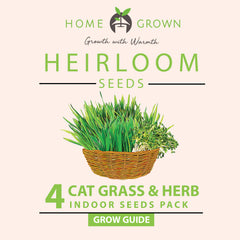 4 Cat Grass and Herbs Grow Guide