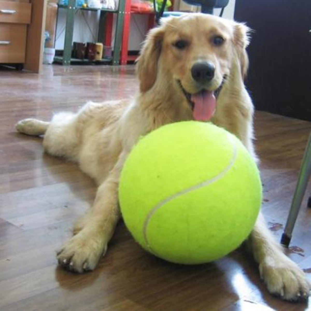 9.5 Inches Dog Tennis Ball for Training