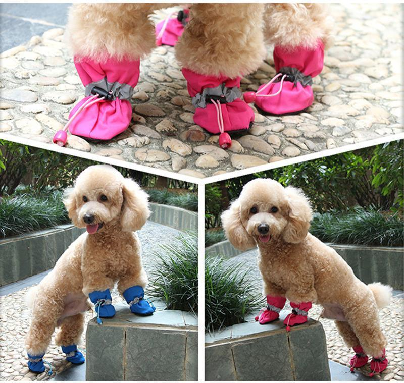 Anti Slip Dog Waterproof Shoes