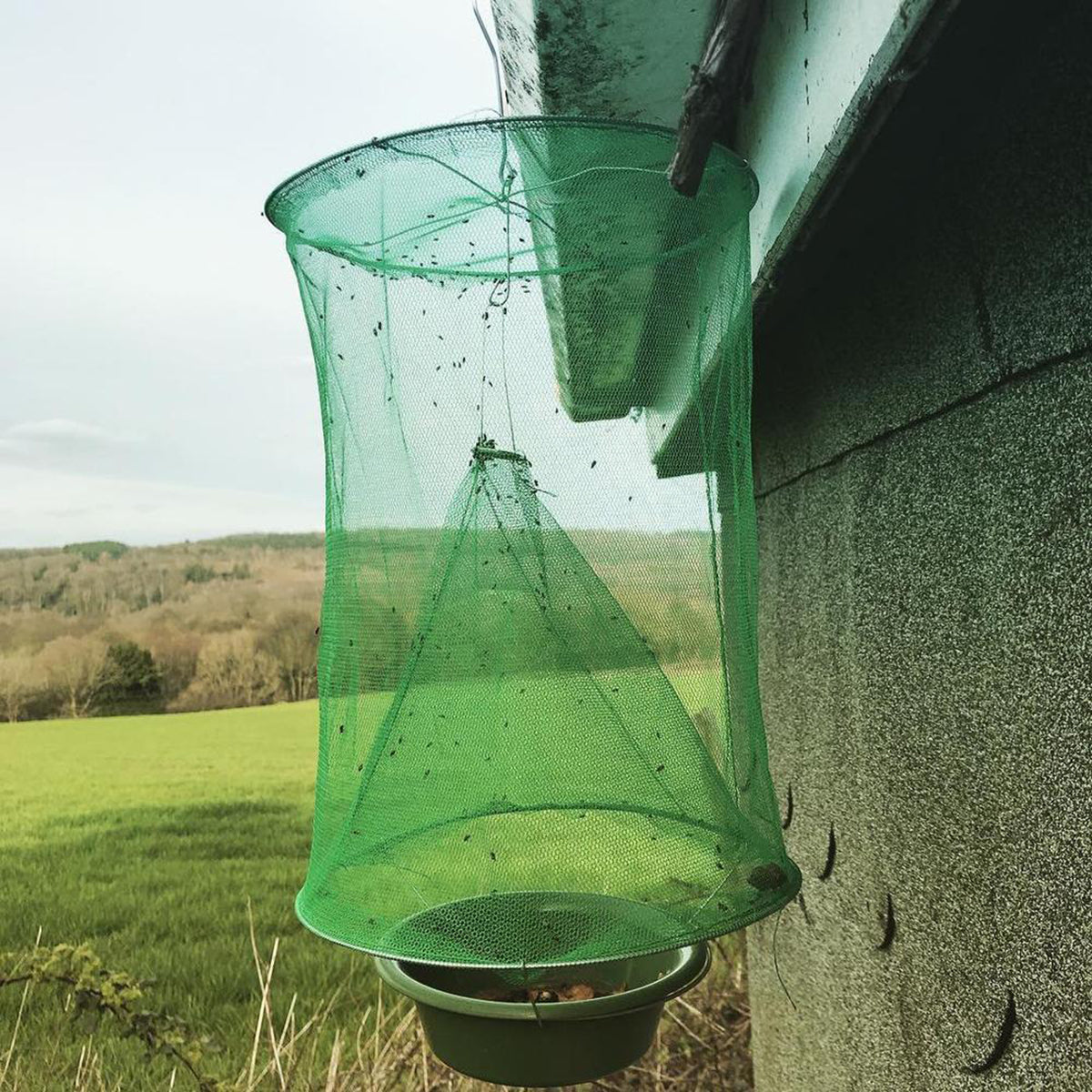 Reusable Flying Insect Trap