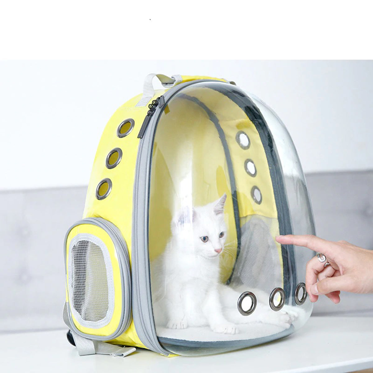 Transparent Capsule Cat Backpack