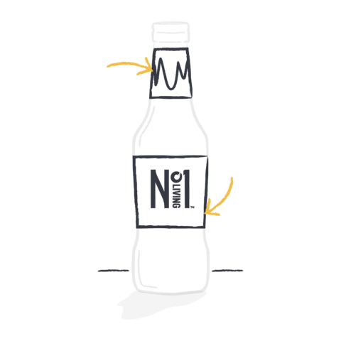 handdrawn image of a kombucha bottle and label
