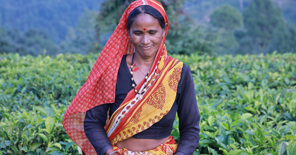 Cultivating Kumaon