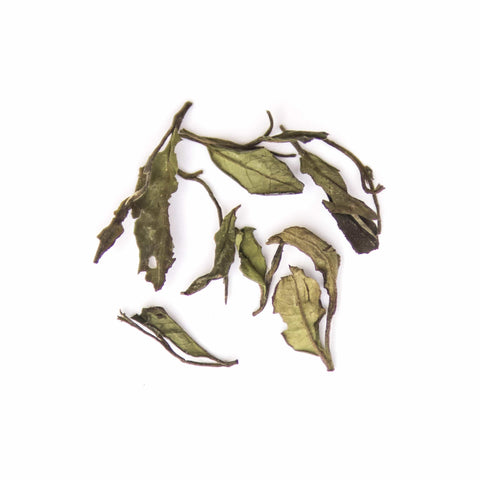 Loose-Leaf White Tea