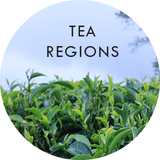 Learn More About India and Nepal Tea Regions